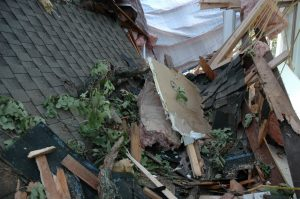 Tree limbs, insulation, drywall pieces, and roofing materials lay in a collapsed section of roof