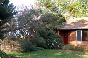 Storm Damage to home